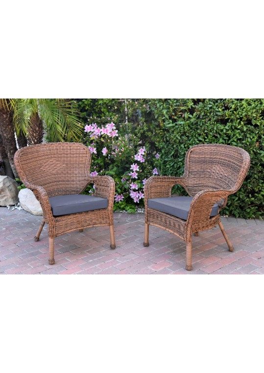 Set of 2 Windsor Honey Resin Wicker Chair with Steel Blue Cushion