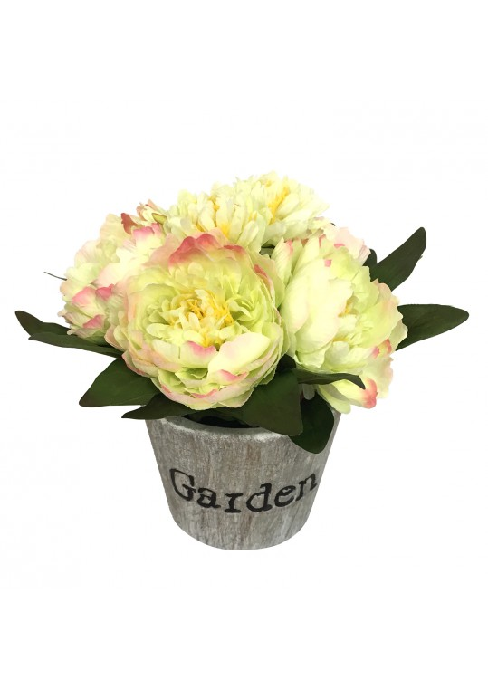 4.72x4.33 Inch PEONY IN Paper pulp pot