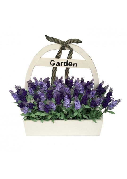 lavender wood potted