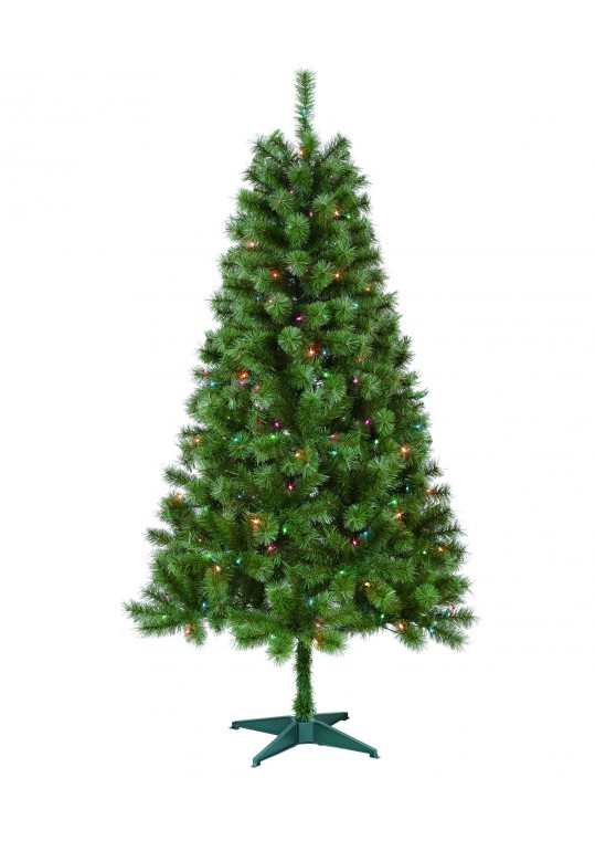 Caoimhe 6FT Sentiments Green Multi Tree