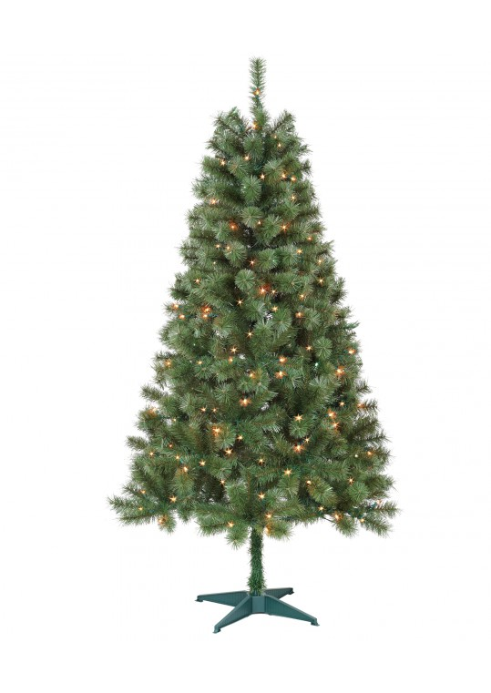 Aisling 6FT Sentiments Green Clear Tree
