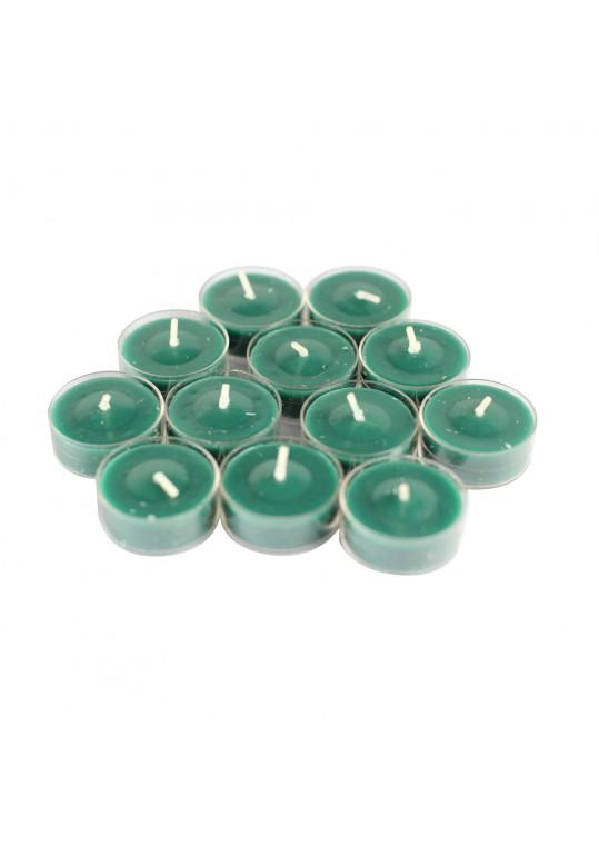 Fresh Frasier Fir Scented Green TeaLight Candles (288pcs/Case)