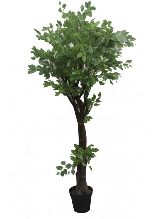 63 Inch Chinese Next Tree