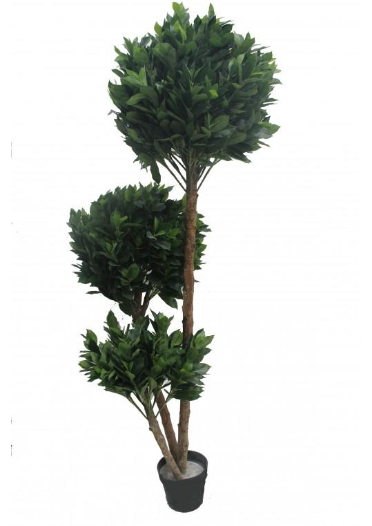 71 Inch Globe Fourtune Tree